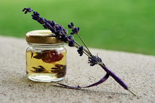 home remedies to eradicate flies