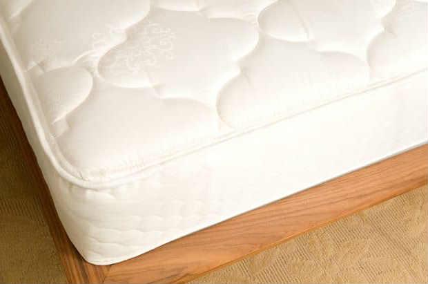 traps to eradicate bed bugs