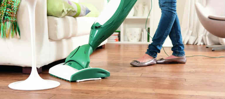 vacuum to kill bed bugs
